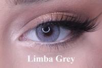 Limba gray под заказ