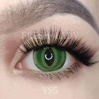 British shorthair green